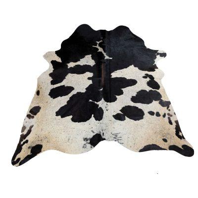 Mooie zwart met witte koeienhuid