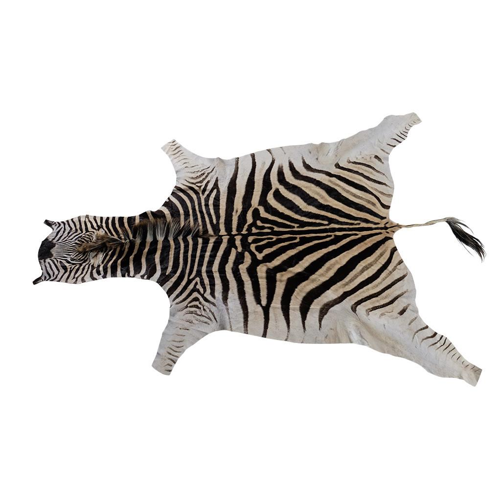 Zebrahuid origineel Afrika
