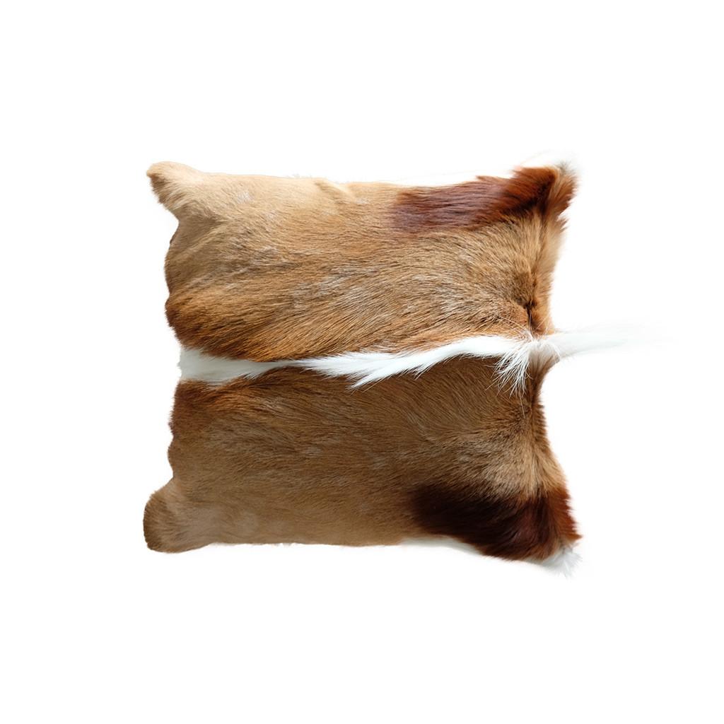 Kussenhoes springbok