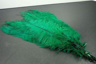 Groene struisvogelveren   decoratieve veren   decoratie veren