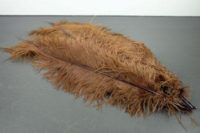Struisvogelveren bruin   decoratieve veren   decoratie veren