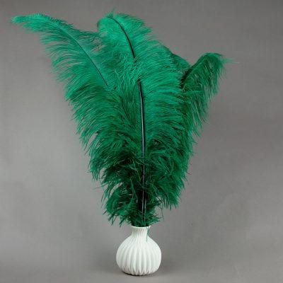 Struisvogelveren groen   decoratie veren