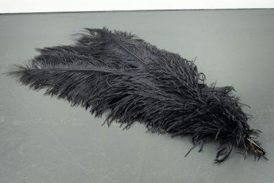 Blauwe struisvogelveren   decoratieve veren   decoratie veren