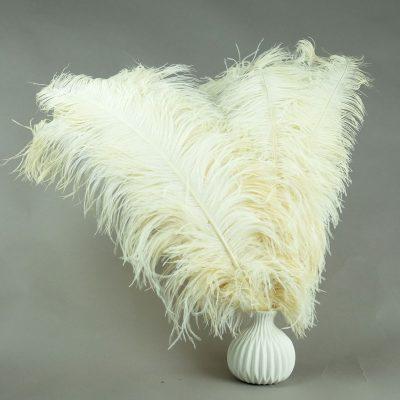 creme struisvogelveren   decoratieve veren   decoratie veren