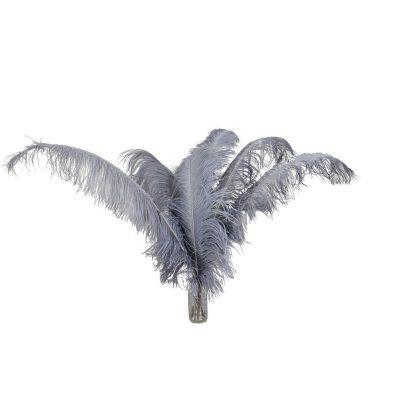 Struisvogelveren grijs