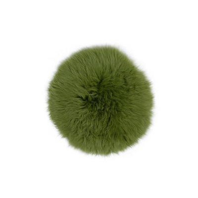 Groene stoelpad van schapenvel