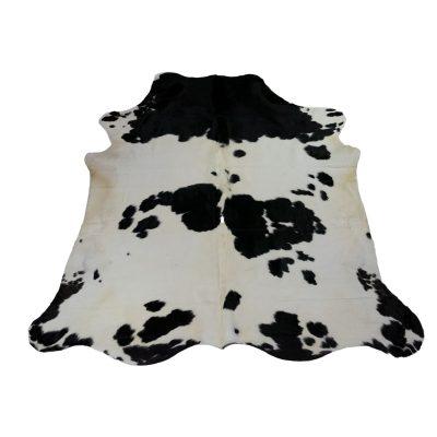 Groot zwart wit koeienkleed